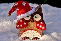 Marché de Noël au Moulin de Pillay à Echillais (17)