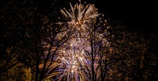 Marché de Noël 2018 à Landeronde (85)