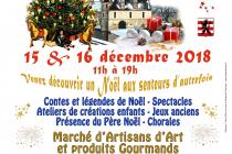 Féerie de Noël 2018 au Domaine de Villarceaux - Chaussy (95)