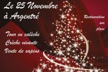 Marché de Noël 2018 d'Argentre (53)