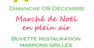 Marché de Noël 2018 de Romorantin (41)