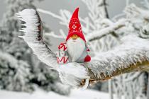 Marché de Noël artisanal 2018 à Pordic (22)