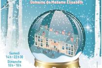 Marché de Noël 2018 à Versailles (78)