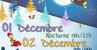 Marché de Noël 2018 à Vouzon (41)