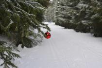 Marché de Noël 2018 à Les Essarts-le-Roi (78)