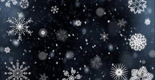 Maché de Noël 2018 à Carrouges (61)