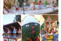 Féerie de Noël 2018 à Vimpelles (77)