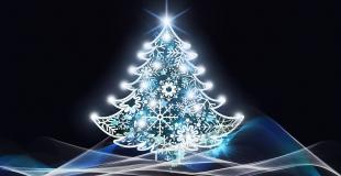 Marché de Noël 2019 de Sault (84)