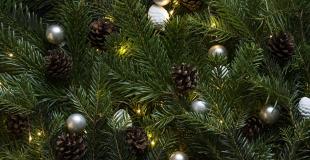 Marché de Noël 2019 à Mellac (29)