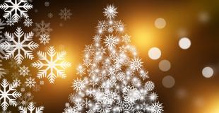 Marché de Noël 2019 de Montigné les Rairies (49)