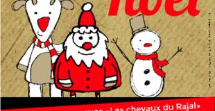 6ème Marché de Noël de Sainte-Eulalie-de-Cernon (12)