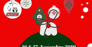 Marché de Noël de tradition alsacienne 2019 de Chevigny Saint Sauveur (21)