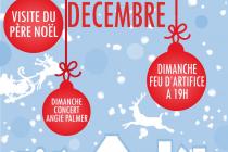 Marché de Noël 2019 à Richelieu (37)