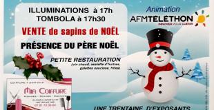 Marché de Noël 2019 à Moussé (35)