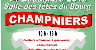 Marche de Noël 2019 à Champniers (16)