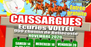 Village de Noël 2020 de Caissargues (30)