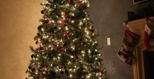 Le sapin de Noël : origine et importance dans une maison