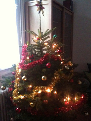 Comment faire une belle d coration de sapin de no l tape for Sapin de noel decore