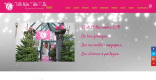 Le Salon de la fête Noël 2015 de La Roche sur Foron